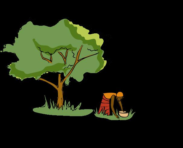 Illustration Baume Corps Super Hydratant Arbre