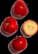 Inhaltsstoff Acerola