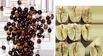 Organic guarana extract