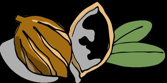 Illustration Baume Corps Super Hydratant Shea Nut