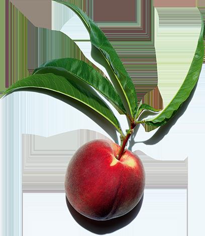 Aktivstoff Pfirsich